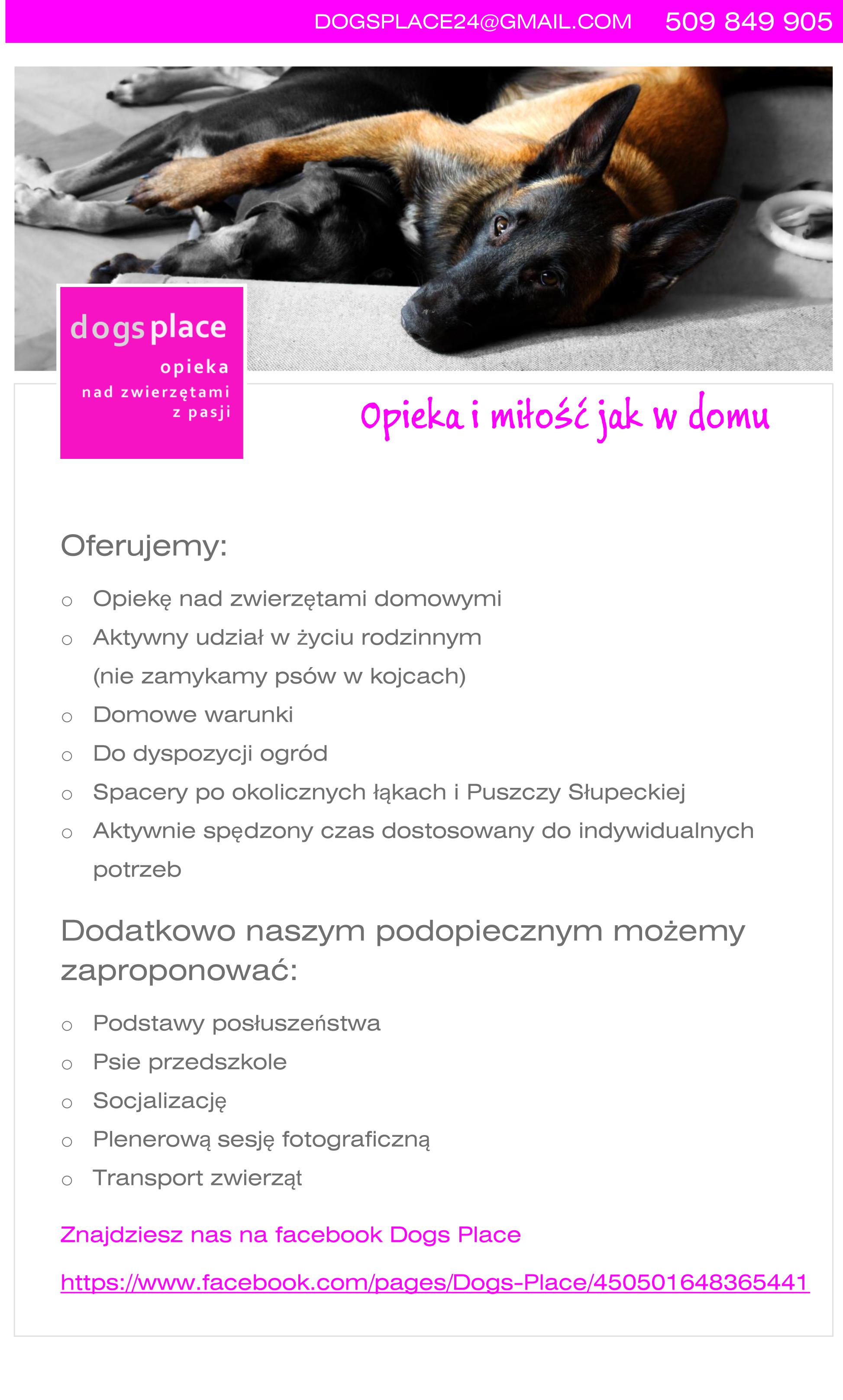 dogsplace24@gmail.com